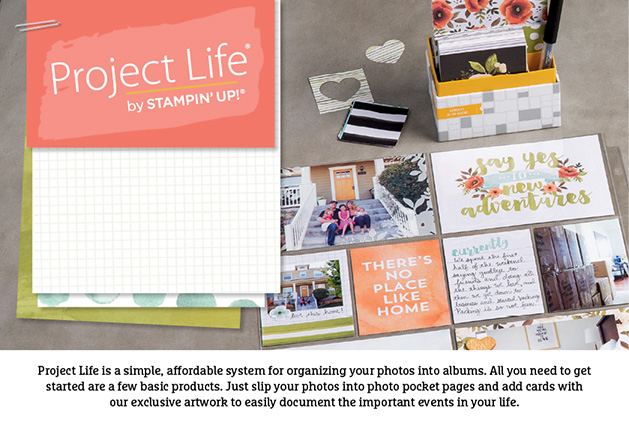 Project Life image