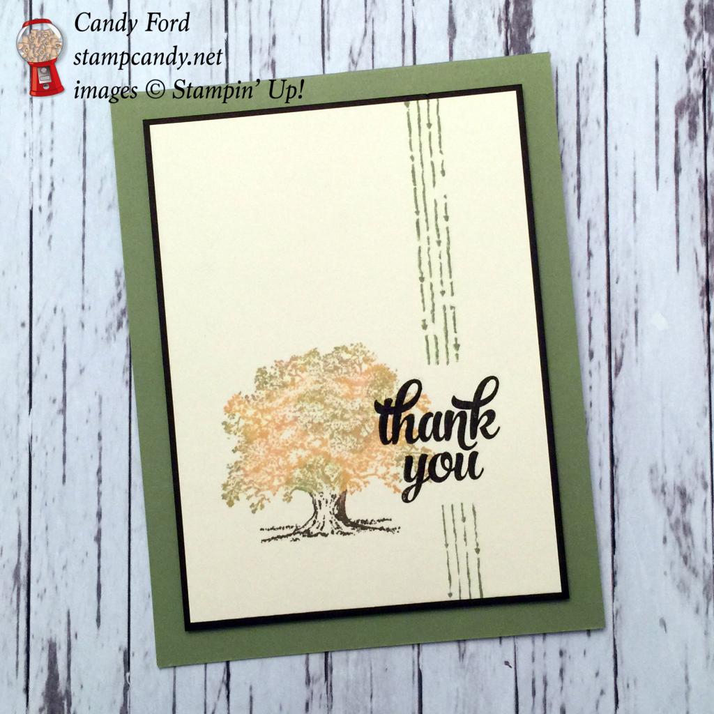 CYCI 93 fall tree thank you card a wm