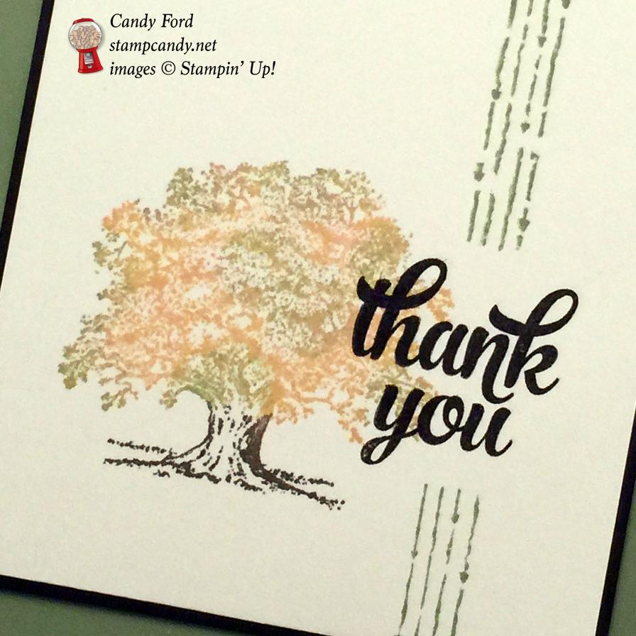 CYCI 93 fall tree thank you card b wm