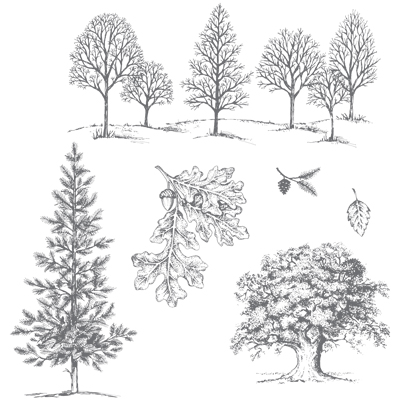 Love As a Tree stamp set