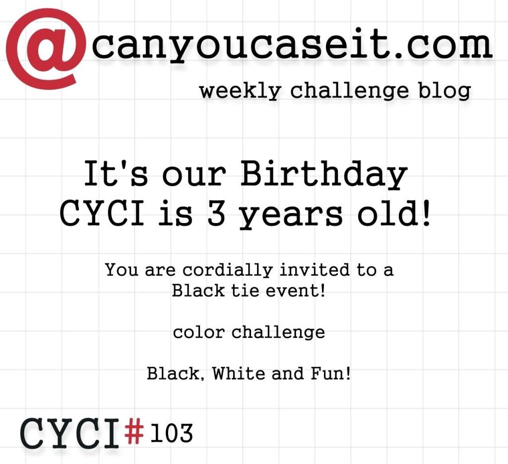 CYCI 103 fun