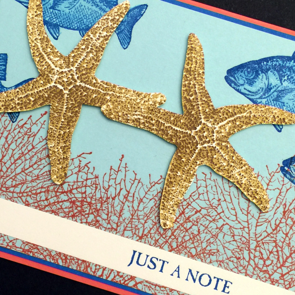 just a note starfish b