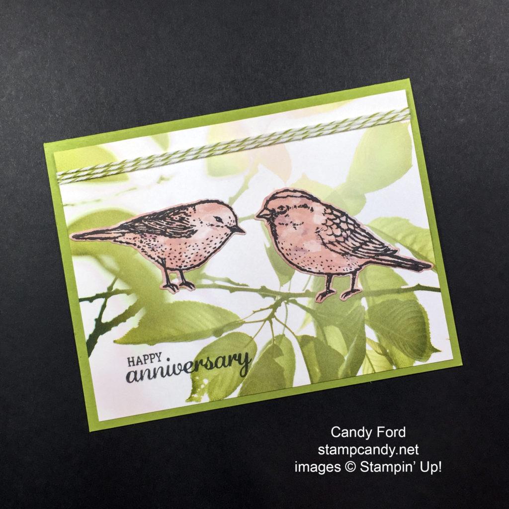birds on a brand a