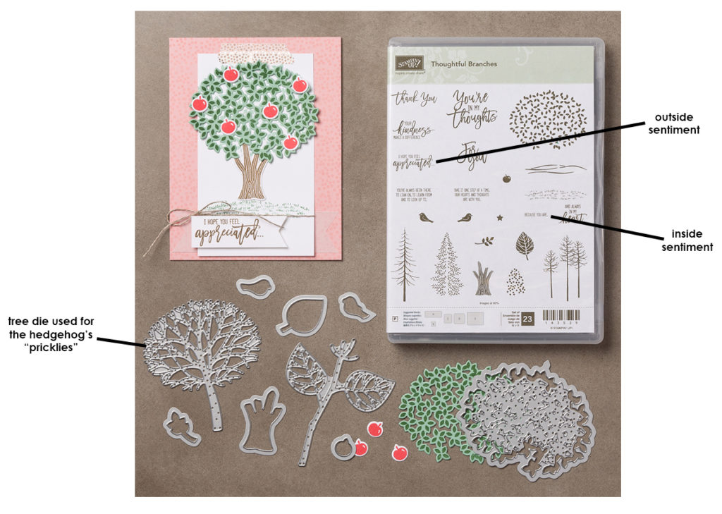 Thoughtful Branches bundle w arrows