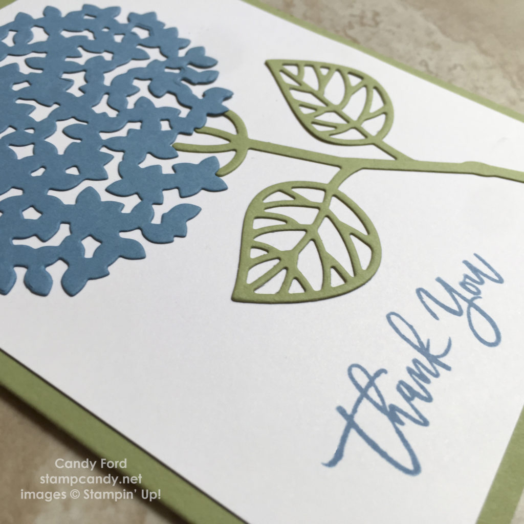 hydrangea card close up