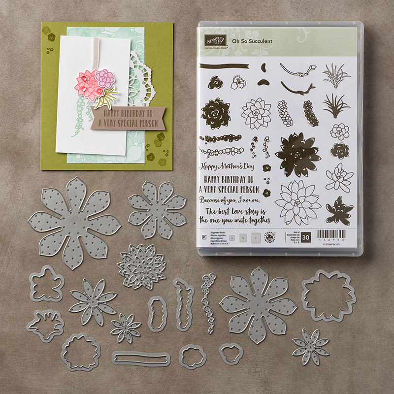 Get the Oh, So Succulent bundle by Stampin' Up! #stampcandy