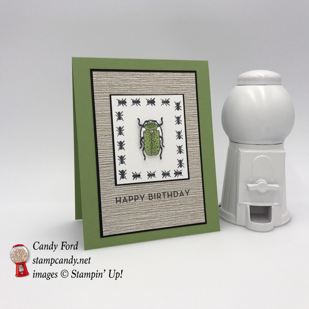 Designed by Candy Ford at stampcandy.net. Learn how to make this birthday card with the Beetles & Bugs stamp set, Big on Birthdays stamp set, Serene Scenery Designer Series Paper Stack, DSP, birthday card, Stampin' Up! #stampcandy