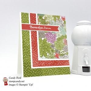 Blog Candy for the ICS April Blog Hop! Succulent Garden DSP, Oh So Succulent stamp set, Stampin