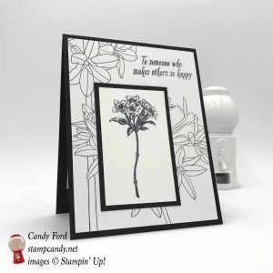 These two free items are available only today and tomorrow! Avant Garden stamp set and Inside The Lines paper. Sale-a-bration 2017. Stampin