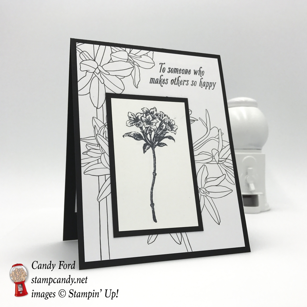 These two free items are available only today and tomorrow! Avant Garden stamp set and Inside The Lines paper. Sale-a-bration 2017. Stampin' Up! #stampcandy