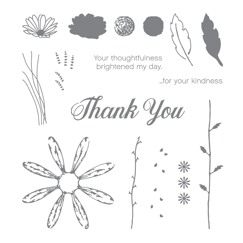 Daisy Delight stamp set by Stampin' Up! #tampcandy