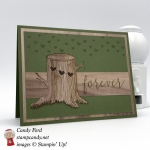 Woodsy Love card made with the Always & Forever stamp set and the Wood Textures DSP by Stampin