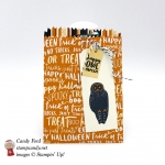 Happy Owl-oween with this Halloween Mini Treat Bag made using the Spooky Cat stamp set, Mini Treat Bag Thinlits Dies, Spooky Night DSP by Stampin