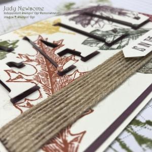 Judy Newsome Stampin