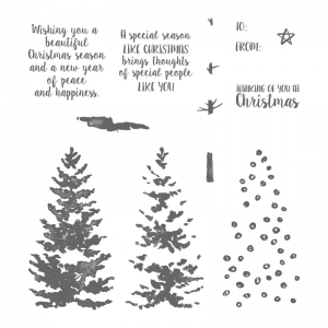 Season Like Christmas Stamp Set © Stampin' Up!