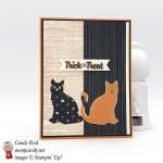 Make this with the Spooky Cat bundle and Spooky Night DSP by Stampin