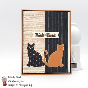 Make this with the Spooky Cat bundle and Spooky Night DSP by Stampin' Up! #stampcandy