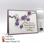 Beautiful branch of flowers grace the front of this beautiful handmade card made by Stamp Candy using Stampin