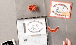 how to order your Stampin' Up! Stamparatus from Stamp Candy