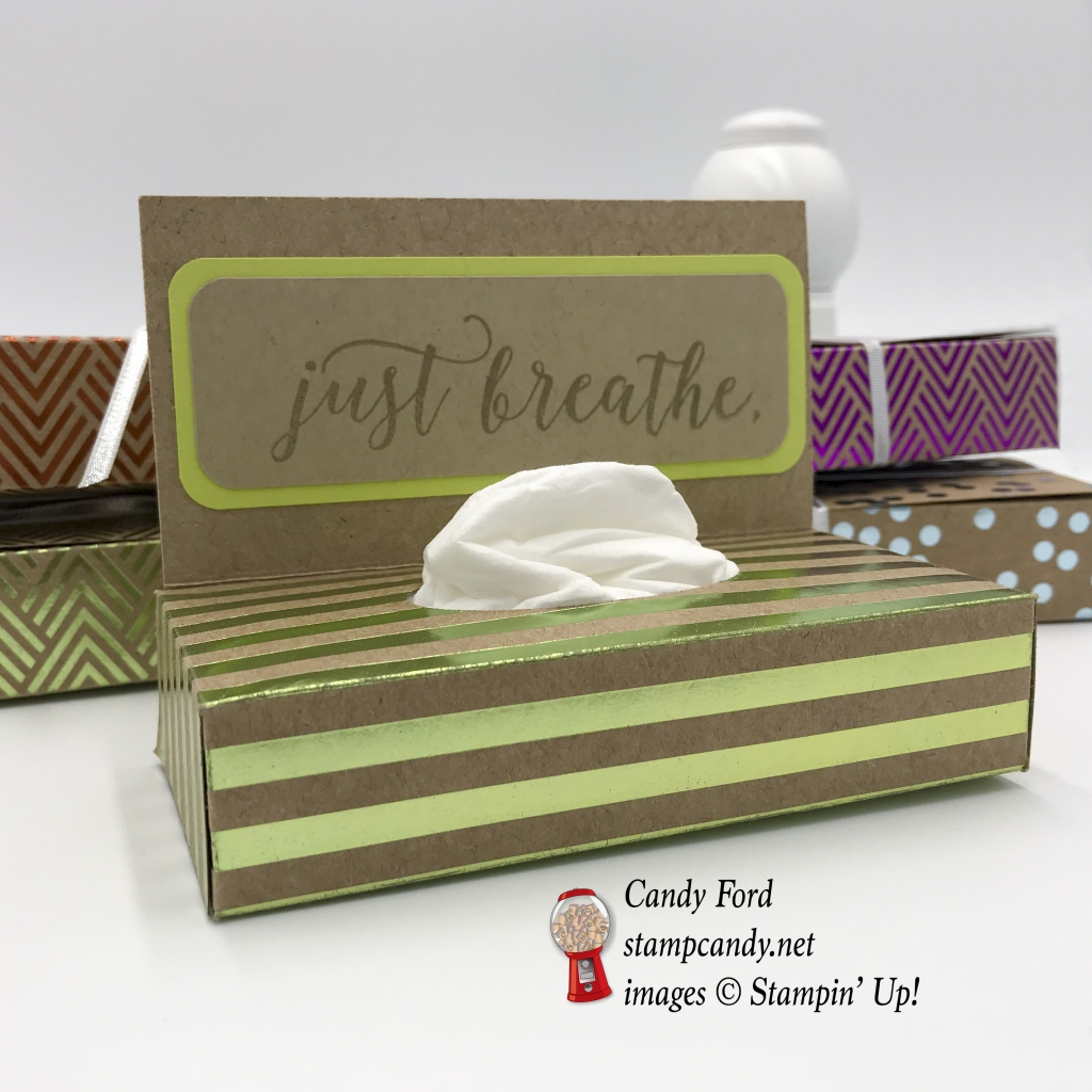 tissue box for purse made with Colorful Seasons stamp set and Foil Frenzy Specialty Designer Series Paper by Stampin' Up! #stampcandy