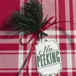 No Peeking tag, Merry Little Labels stamp set, Green Twigs, Stampin