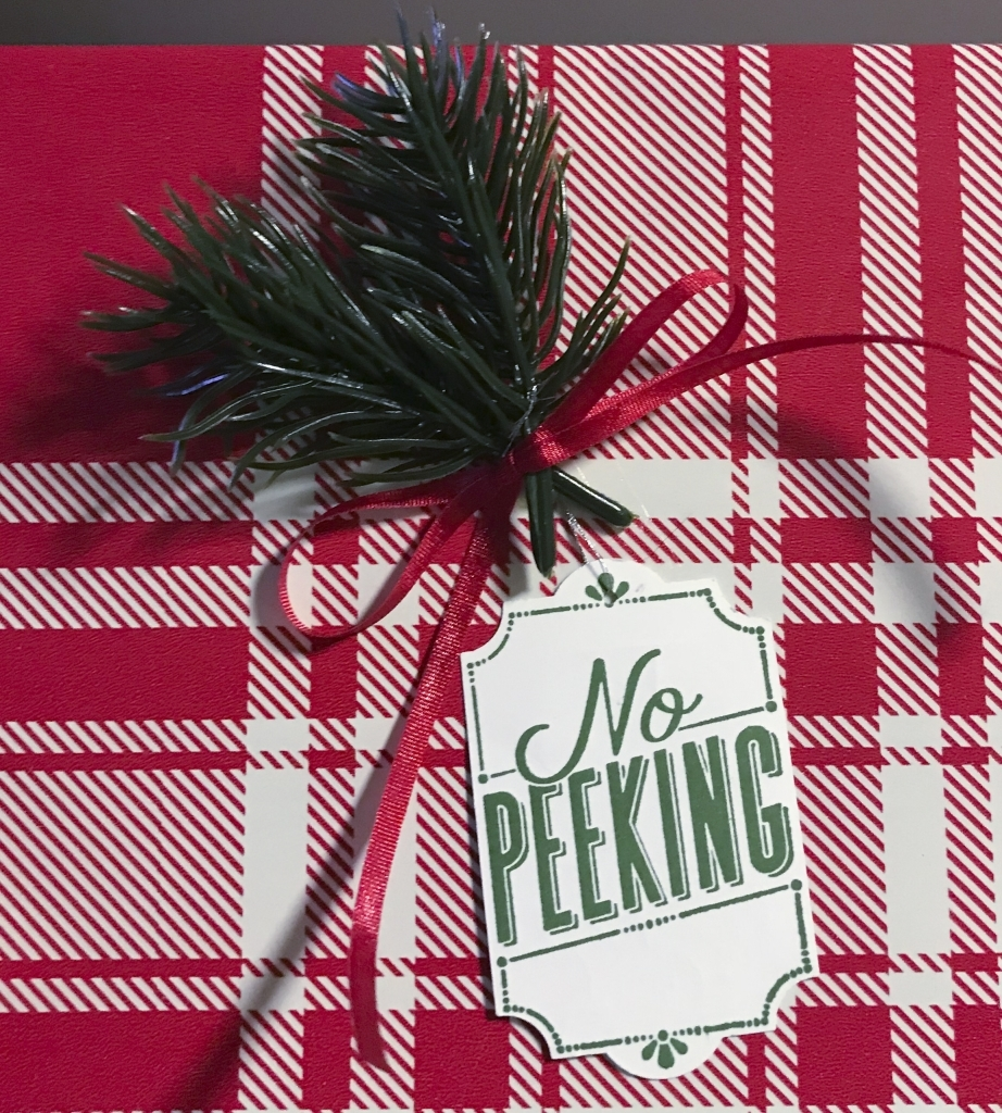 No Peeking tag, Merry Little Labels stamp set, Green Twigs, Stampin' Up! #stampcandy