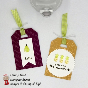 "Tags made with the Tutti-frutti swuite: Tutti-frutti Designer Series Paper DSP, Fruit Basket Bundle (Fruit Basket stamp set and Itty Bitty Fruit Punch Pack,) and Lemon Lime Twist 3/8"" Mini Striped Ribbon, also Starburst Punch, by Stampin"