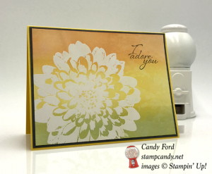 White Embossed Stampin