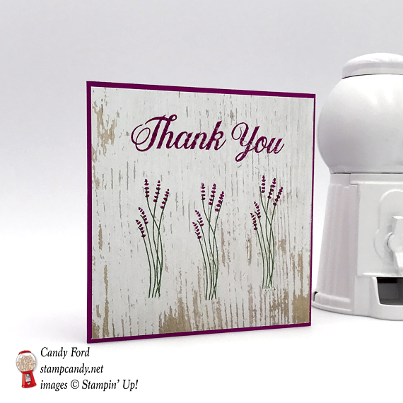 Handmade Thank You card made using Stampin' Up! Daisy Delight stamp set by Candy Ford of Stamp Candy