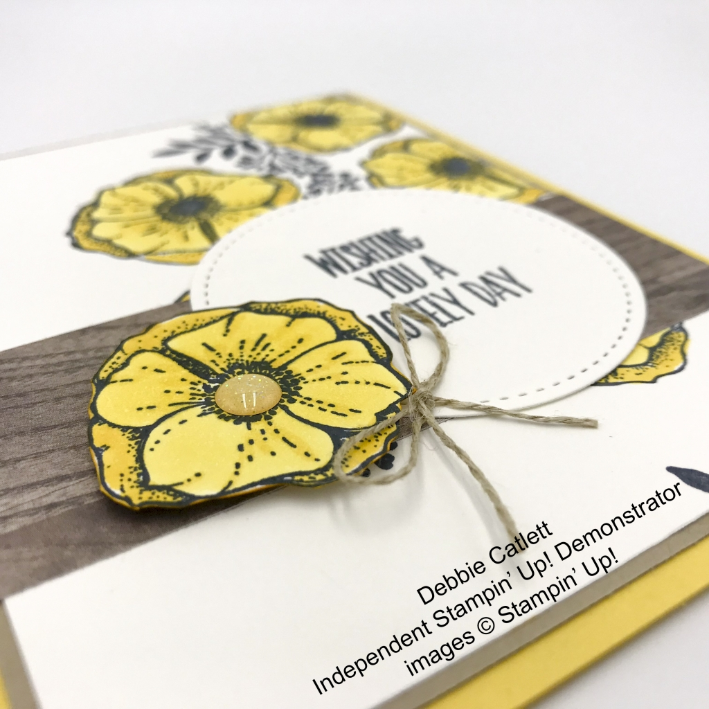 Made by Debbie Catlett, Independent Stampin' Up! Demonstrator, using the Amazing You stamp set