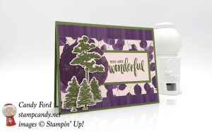 Stampin Up Natures Poem Suite, Rooted in Nature stamp set, Natures Roots Framelits Dies handmade card made by Candy Ford of Stamp Candy