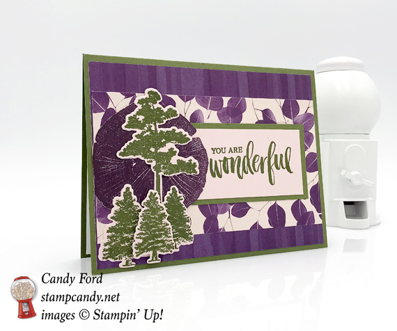 Stampin Up Share What You Love and Love What You Do handmade card by Candy Ford of Stamp Candy