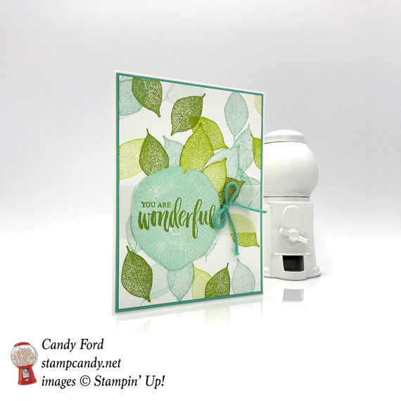 Stampin Up Rooted in Nature bundle bright and cheery handmade card by Candy Ford of Stamp Candy