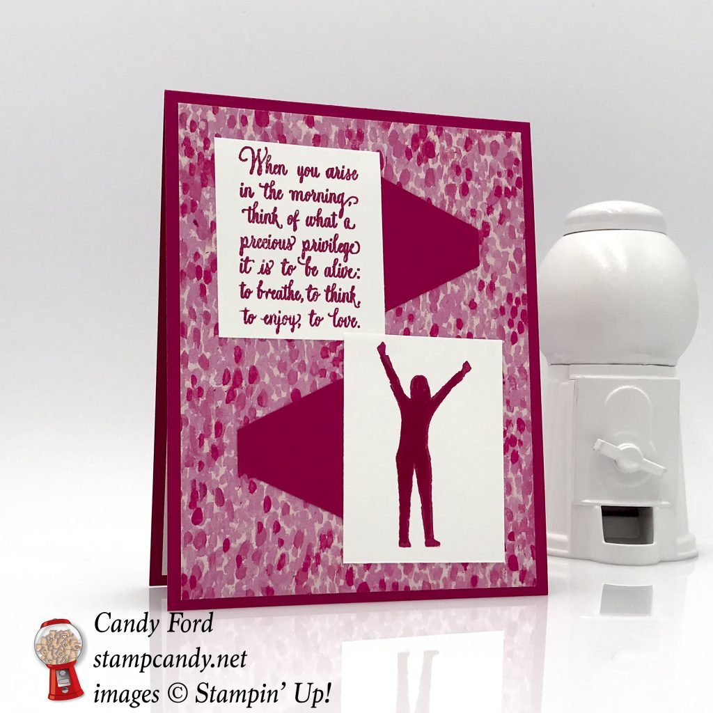 Enjoy Life card in Lovely Lipstick by Stampin' Up! #stampcandy