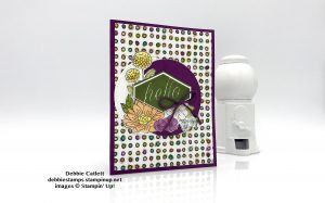 Accented Blooms card by Debbie Catlett, Stampin