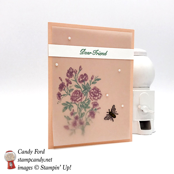 Stampin' Up! Very Vintage Vellum Hello Friend handmade card by Candy Ford of Stamp Candy