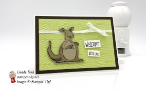 Welcome little one, baby note card, Animal Outing bundle by Stampin