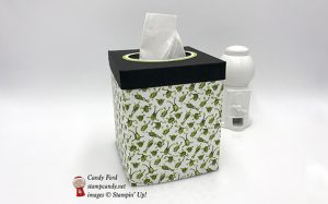 tissue box cover made with Toil & Trouble DSP by Stampin