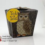 Still Night, Cauldron Bubble, Wood Textures, Trick or Treat Halloween Takeout Treat Box, Stampin