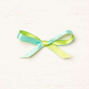 Coastal Cabana / Granny Apple Green Refersible Ribbon © Stampin' Up!