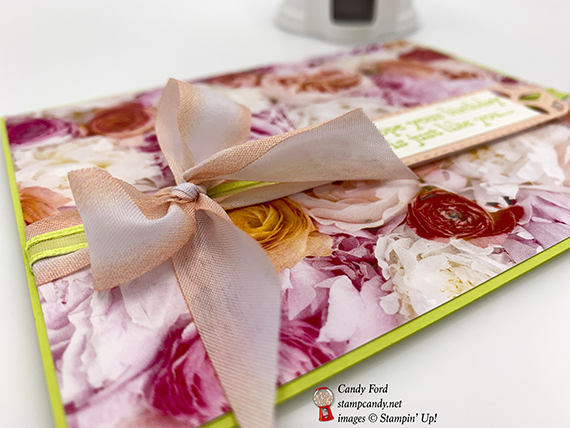 Pretty Kitty Petal Parade card for the IRBH Pretty Paper Pretty Ribbons, Stampin' Up! #stampcandy