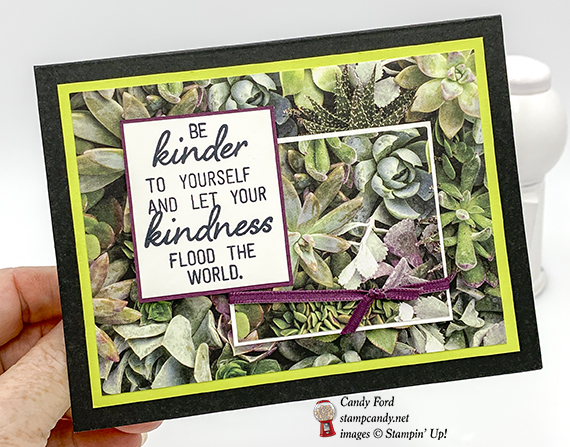 Stampin' Up! February 2019 Paper Pumpkin kit, Grown with Kindness, alternate projects made by Candy Ford #stampcandy