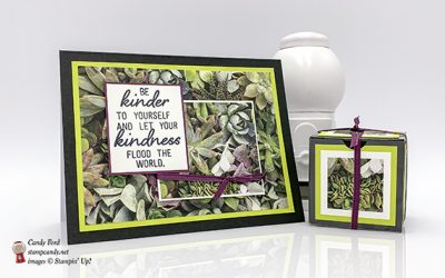 Grown With Kindness for APPT Blog Hop