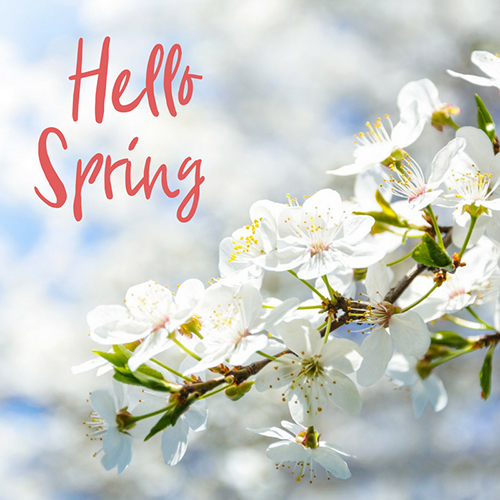 Hello Spring! #stampcandy