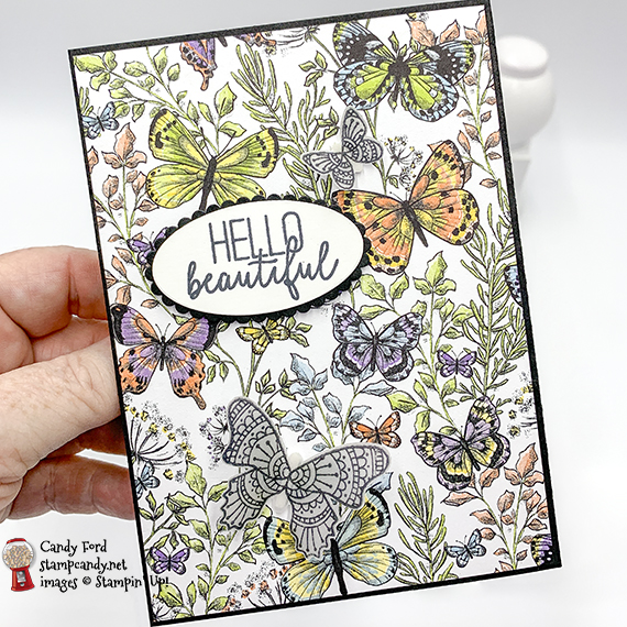 Butterfly Gala stamp set, Butterfly Dup Punch, Botanical Butterfly Designer Series Paper from Stampin' Up! Card made by Candy Ford #stampcandy