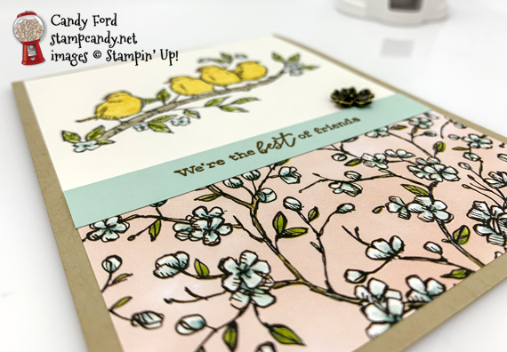 Sneak Peek Free As A Bird from the 2019-2020 Annual Catalog Best Friends handmade card by Candy Ford of Stamp Candy
