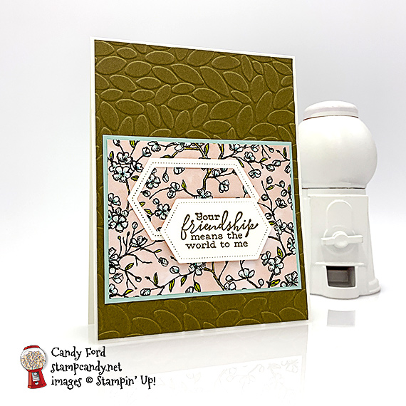 Stampin' Up! Bird Ballad bundle with Layered Leaves Embossing Folder handmade card by Candy Ford at Stamp Candy