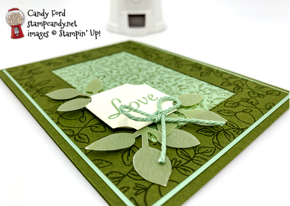 Stampin' Up! Verdant Garden with Leaf Punch, Darling Label Punch and Stitched Rectangles Dies by Candy Ford of Stamp Candy