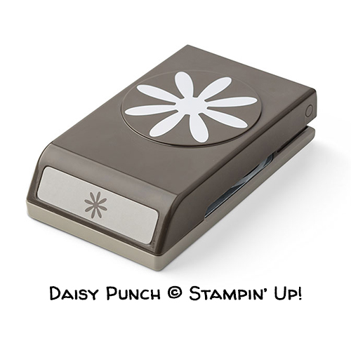 Daisy Punch © Stampin' Up!