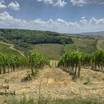 2019 Incentive Trip - Tuscany #stampcandy
